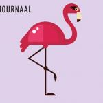 Flamingo Facebook Festival Journaal